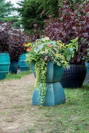 Outdoor Potted Plants Full Sun by Container Gardens Flower Power New England Today