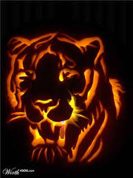 37 best halloween tiger pumpkins images on pinterest pumpkin