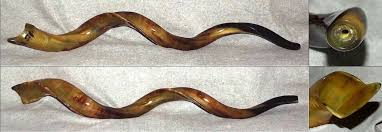 horn shofar yemenite kudu horn shofar 47 25 7c mouthpiece