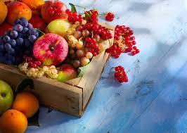 mucusless diet healing system mucusless foods arnold ehret