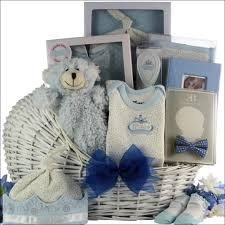 gift baskets for new parents announcing our brand new baby gift basket line greatarrivals