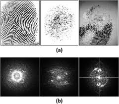 biometric quality a review of fingerprint iris and face