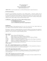 Resume Samples Professional Summary by Qc Supervisor Resume Free Resume Example And Writing Download