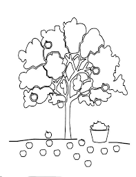 apple tree coloring pages 241 best ראש השנה ויום כיפור images on pinterest fruit