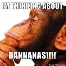 Monkey Meme Generator - matrix morpheus meme memeisms pinterest meme and memes
