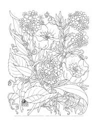 beautiful printable coloring pages for adults only 64 in coloring