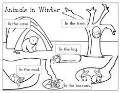 animals in winter printable worksheetsf forest animals and