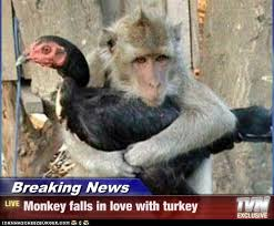 happy thanksgiving from the monkey cage the monkey cage