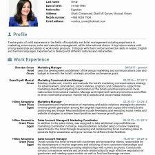 resume exles marketing exle resume marketing coordinator cv digital sle fresher
