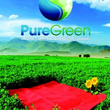 puregreen carpet upholstery cleaning 59 photos 151 reviews