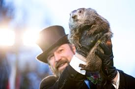 punxsutawney phil 2018 results inspires groundhog day memes time