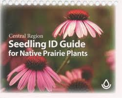 native plant guide prairie moon nursery books seedling id guide for native