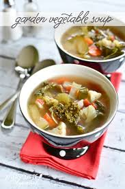 garden vegetable soup simply whisked