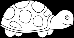 cute turtle coloring page free clip art