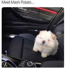 Mashed Potatoes Meme - dopl3r com memes meet mash potato