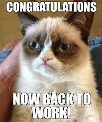 Funny Congratulations Meme - congrats animals meme animals best of the funny meme