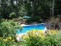 Landscaping Around Pools by 37 Best Pool Spa Images On Pinterest Backyard Ideas Landscaping