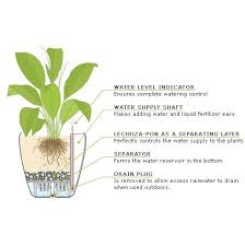 Self Watering Planters 16 Best Lechuza Self Watering Planters Images On Pinterest