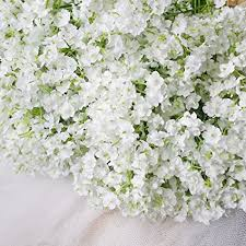baby breath bringsine baby breath gypsophila wedding decoration