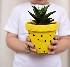diy pineapple planters make life lovely