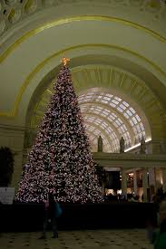 Fresh Christmas Trees Vancouver Wa by Washington D C Archives Cheaptickets Travel Deals