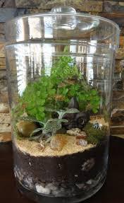 living room jar for terrarium decorative furniture plant sand