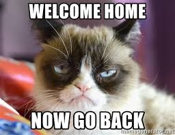 Welcome Home Meme - welcome home now go back high res grumpy cat meme generator