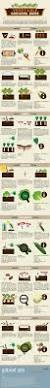 best 10 organic gardening ideas on pinterest organic gardening