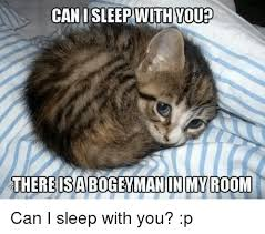 Grumpy Cat Sleep Meme - can i sleep with you there isabogeyman in my room can i sleep with
