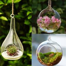 Hanging Glass Wall Vase Aliexpress Com Buy Transparent Ball Globe Shape Clear Hanging