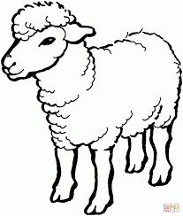sheep 1 coloring page print download animal free printable