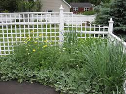 garden design garden design with narrow space plants home design