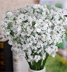 silk baby s breath high quality gypsophila baby s breath silk plant artificial