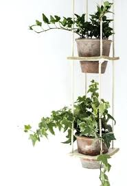 plant wall hangers indoor indoor hanging plant stand plant hanging basket tree planter stand