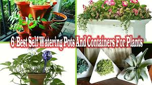 Self Watering Planters 6 Best Self Watering Pots And Containers For Plants Gardening