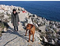 pets news tips u0026 guides glamour happy bastille day it u0027s a dog u0027s life in st jean cap ferrat