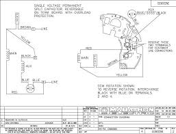 electric motors wiring schematic electric wiring diagrams collection
