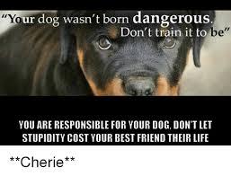 Yo Dog Meme - r dog wasn t born dangerous don t train it to yo be you are