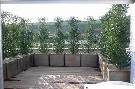 berdachung balkon balkon windschutz glas 100 images windschutz