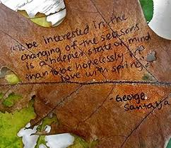 seasons quotes quotes about seasons sayings about seasons