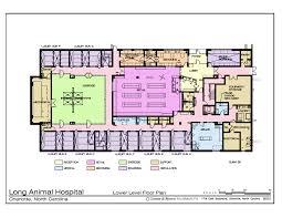 clinic floor plan uncategorized veterinary hospital floor plan awesome inside best