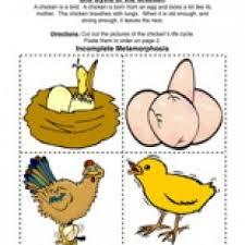 farm worksheets have fun teaching