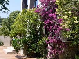 chambre d hote de luxe cassis l avila cassis une maison d hôte de luxe en centre ville toota cassis