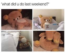 Tuesday Meme - tuesday meme dump album on imgur