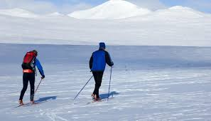 troll ski trail from rondane to lillehammer cross country skiing