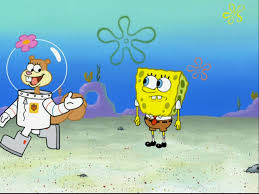 sandy cheeks gallery to squarepants or not to squarepants