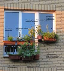 gem se pflanzen balkon mischkultur biobalkon