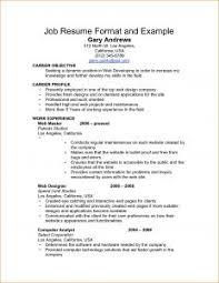 Job Application Resume Examples Of Resumes 79 Captivating Job Resume Title Examples