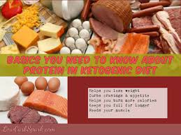 basics you need to know about protein in ketogenic diet u0026 top 10