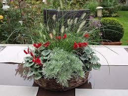 herbstbepflanzung balkon plaudereien über zimmerpflanzen und andere schöne dinge des lebens